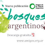 Bosques argentinos banner